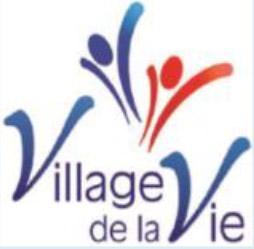 VDLV Logo